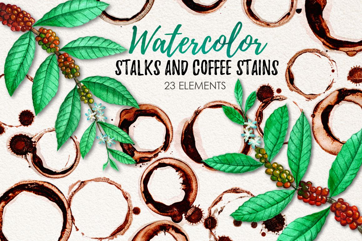 Watercolor Coffee Stains and Stalks example image 1