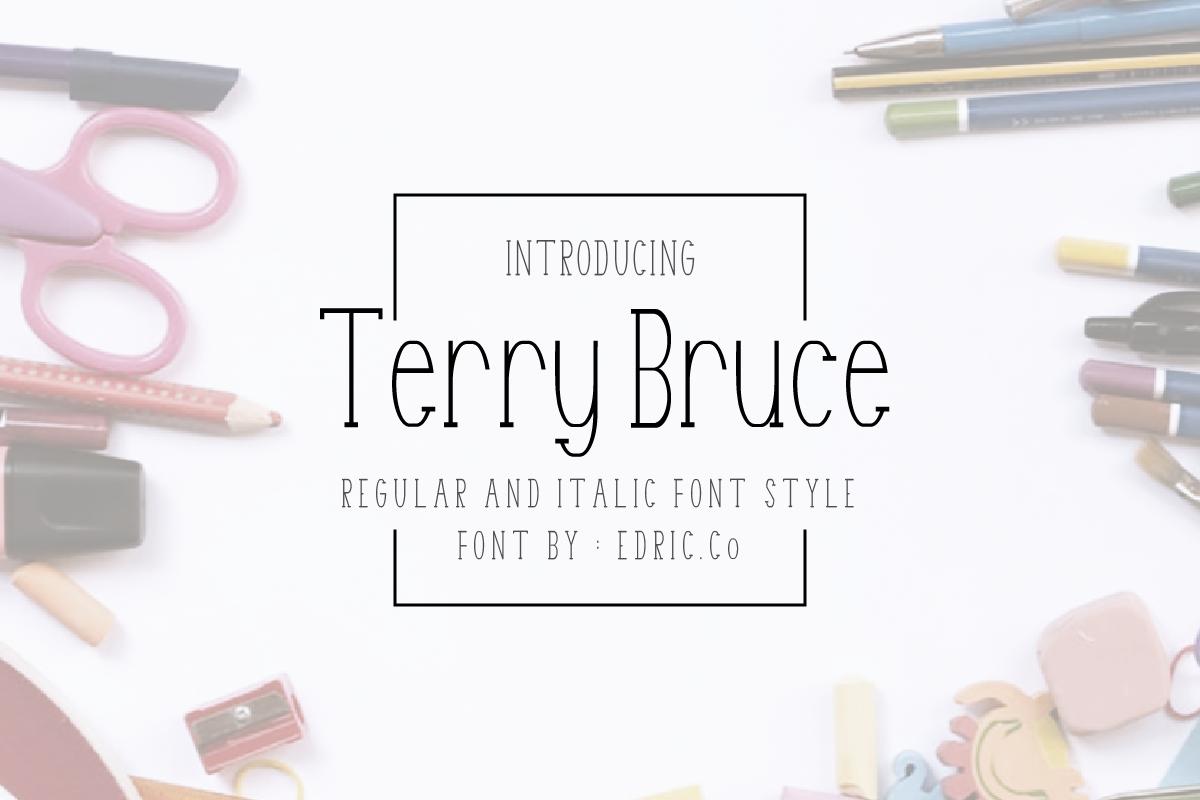 TerryBruce example image 1