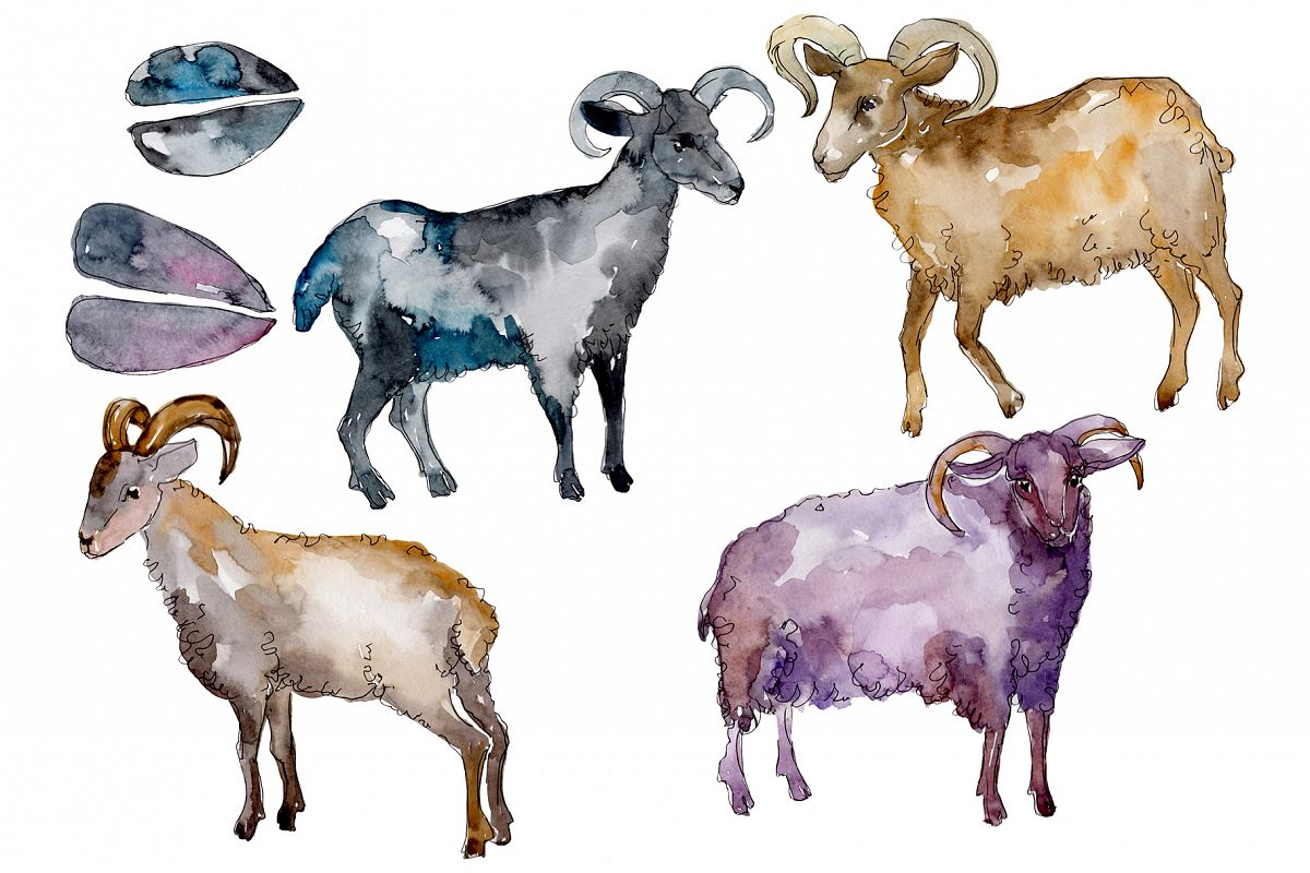 Farm animals Ram Watercolor png example image 1