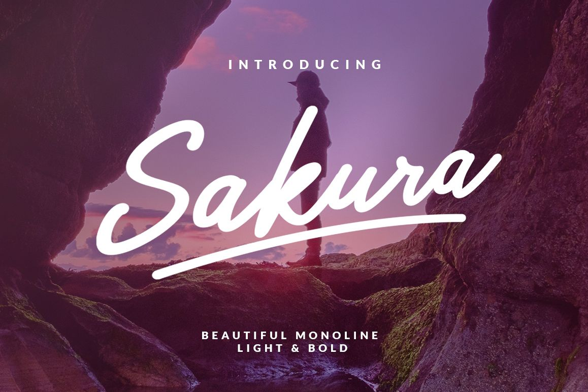 Sakura - Font Family example image 1