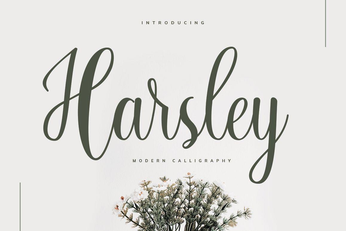 Harsley Script example image 1