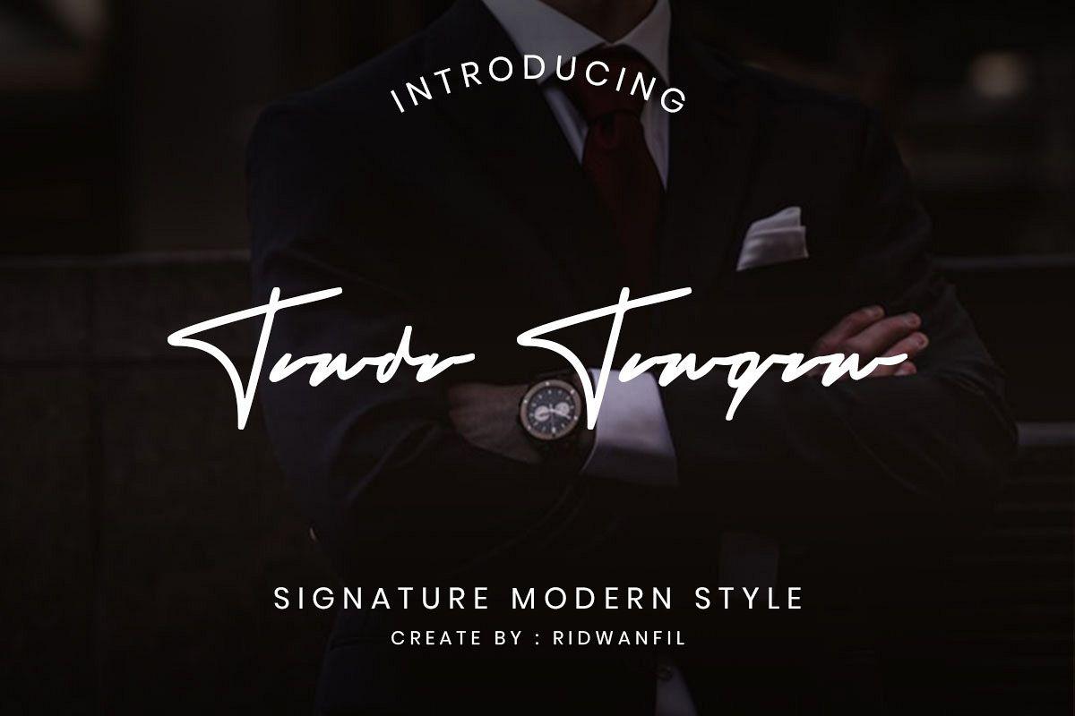 Tanda Tangan font - Signature Modern Style example image 1