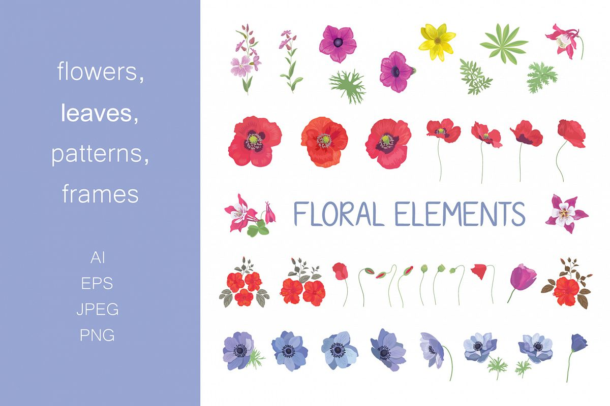 Set Of Flower Floral Elements Frames Seamless Patterns Designs