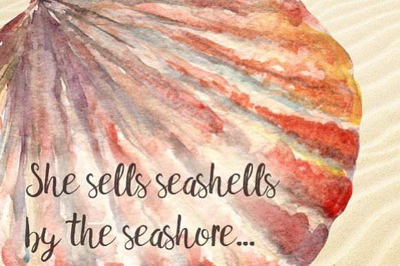 Watercolor Seashells Set - 8Png example image 1