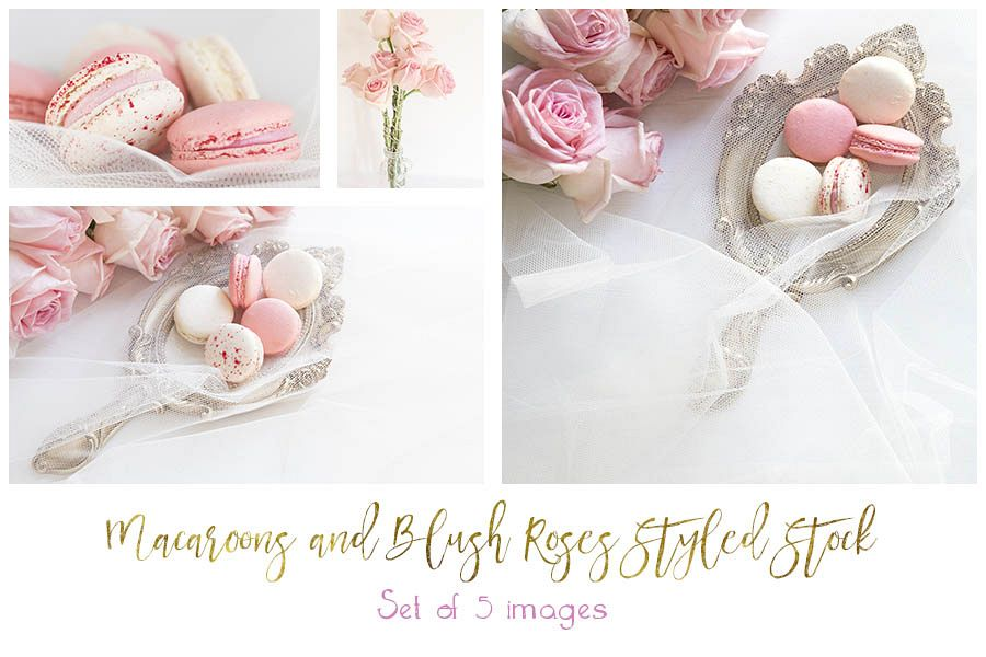 Pink and White Macaroon and Blush Roses Styed Stock bundle example image 1
