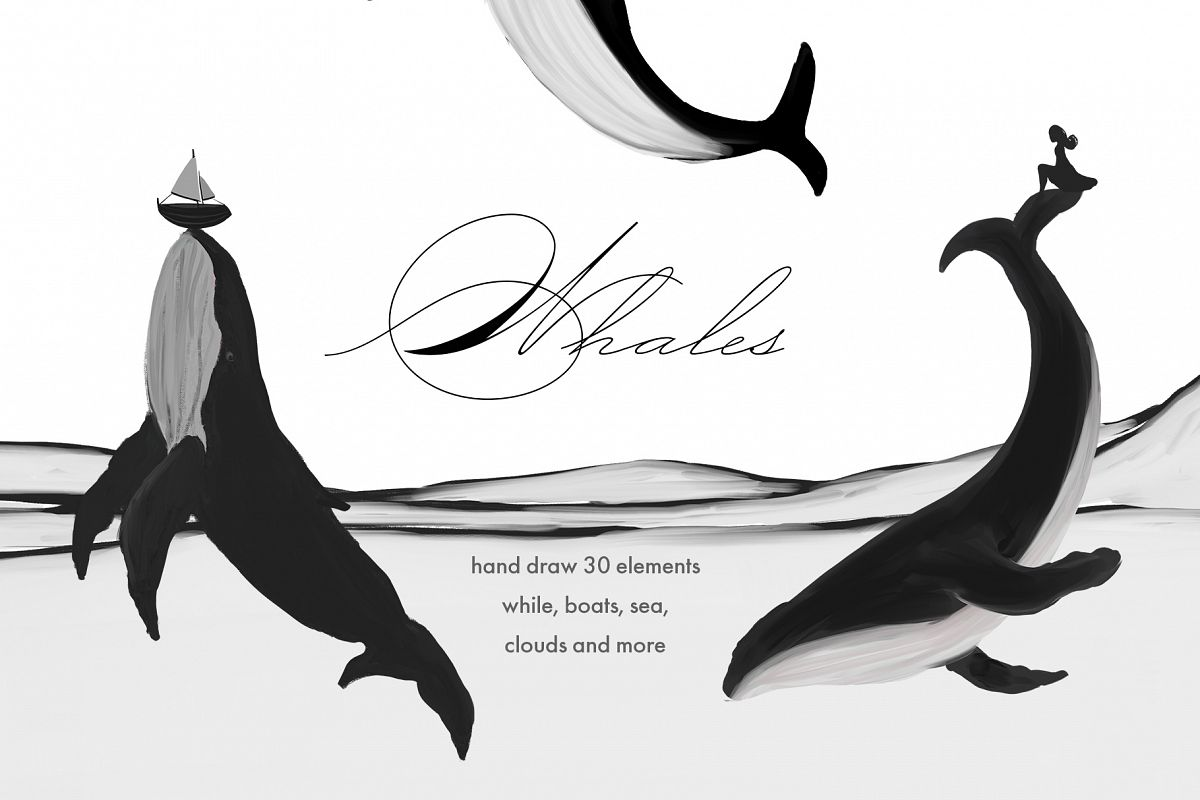 Black Whales illustrations example image 1