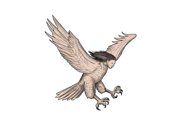 Harpy Swooping Tattoo example image 1