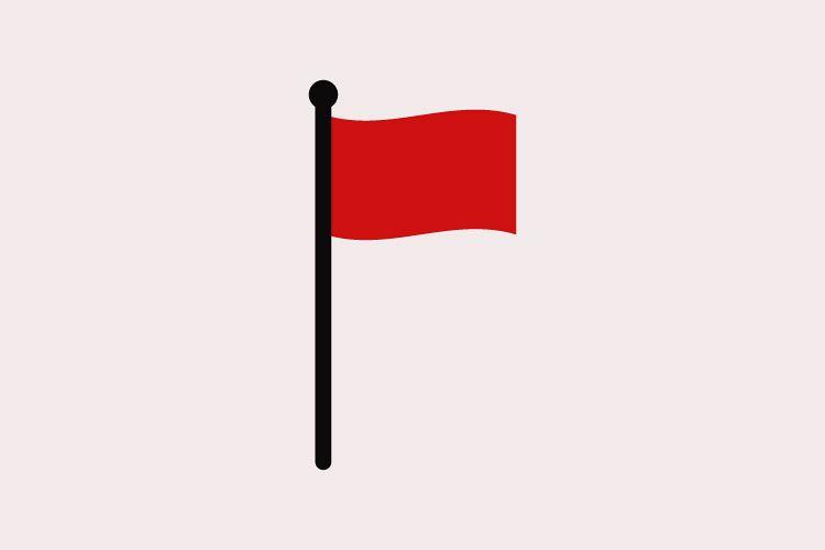 Flag icon example image 1