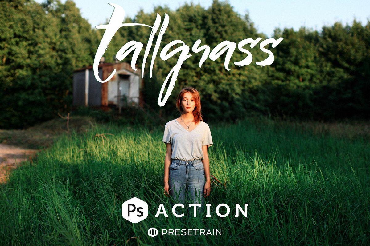 Tallgrass Photoshop Action example image 1