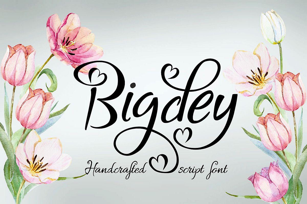 Bigdey Font example image 1