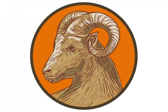 Ram Goat Head Circle Drawing example image 1