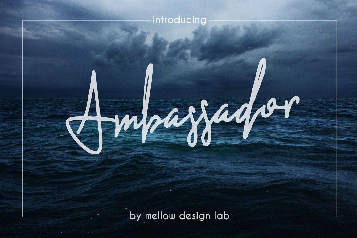 Ambassador example image 1