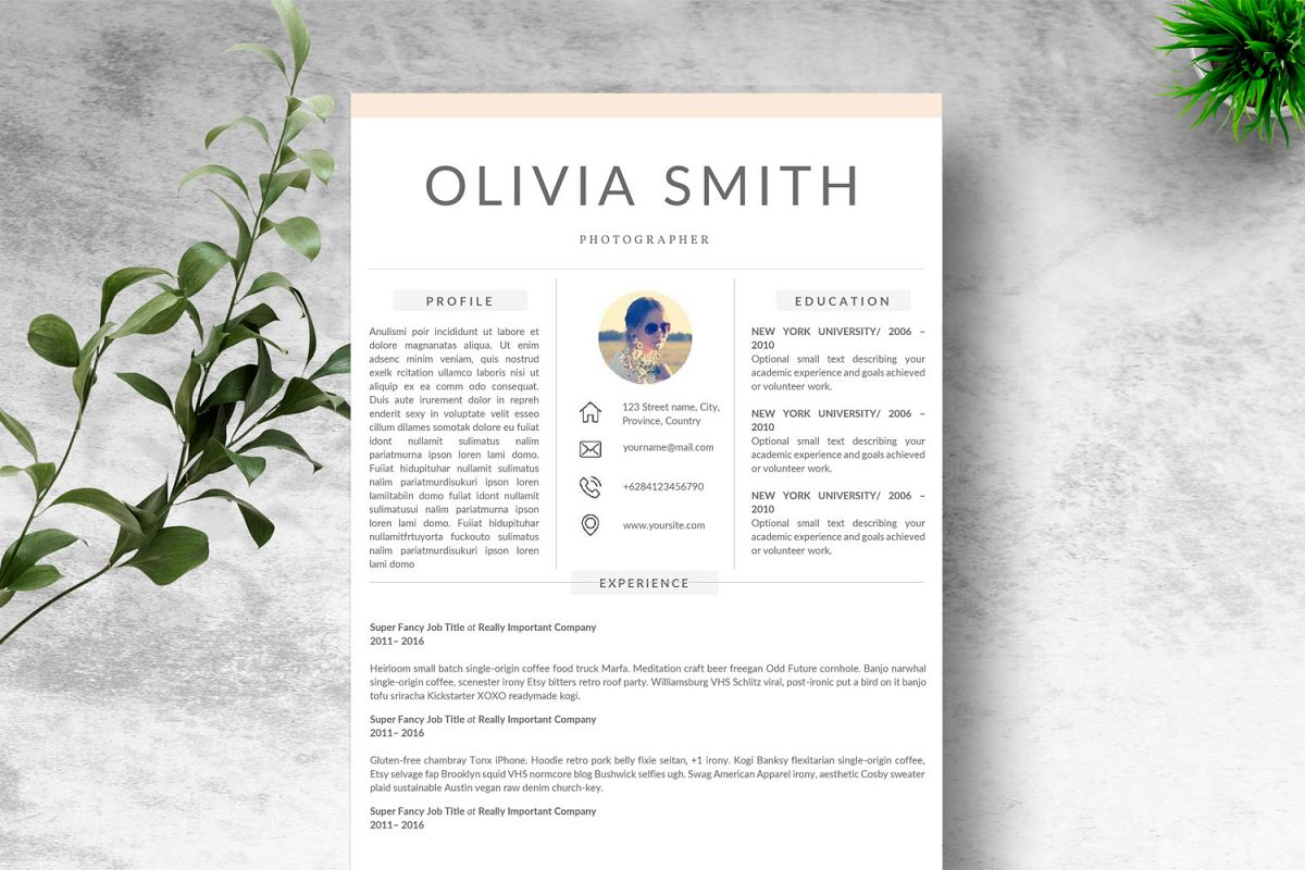 Creative Resume Template Google Docs MAC PAGES