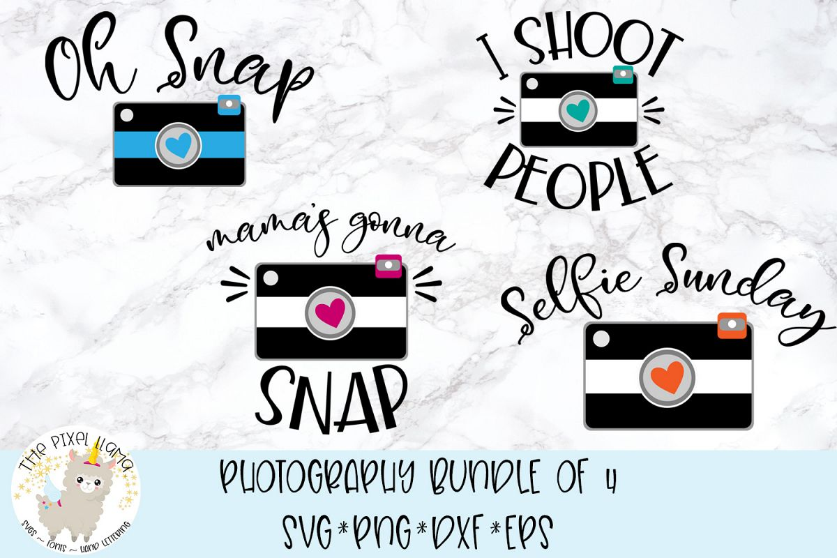 Photography Bundle of 4 SVG Cut File example image 1