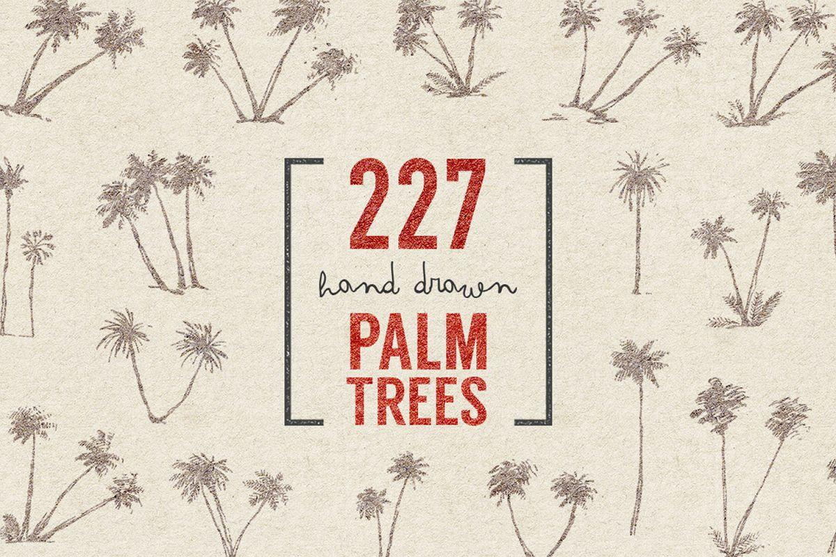 227 hand drawn palms + BONUS example image 1