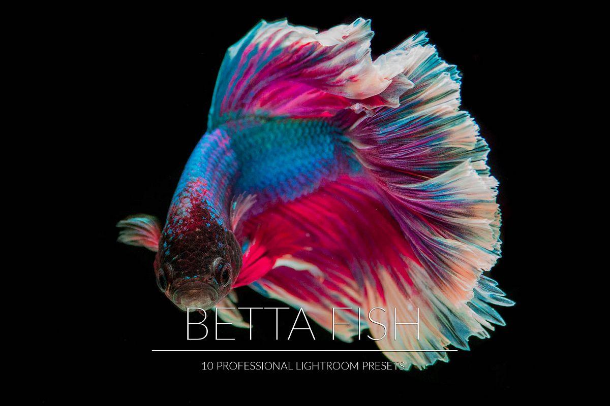 Betta Fish Lr Presets example image 1