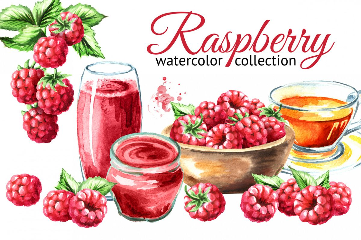 Raspberry. Watercolor collection example image 1