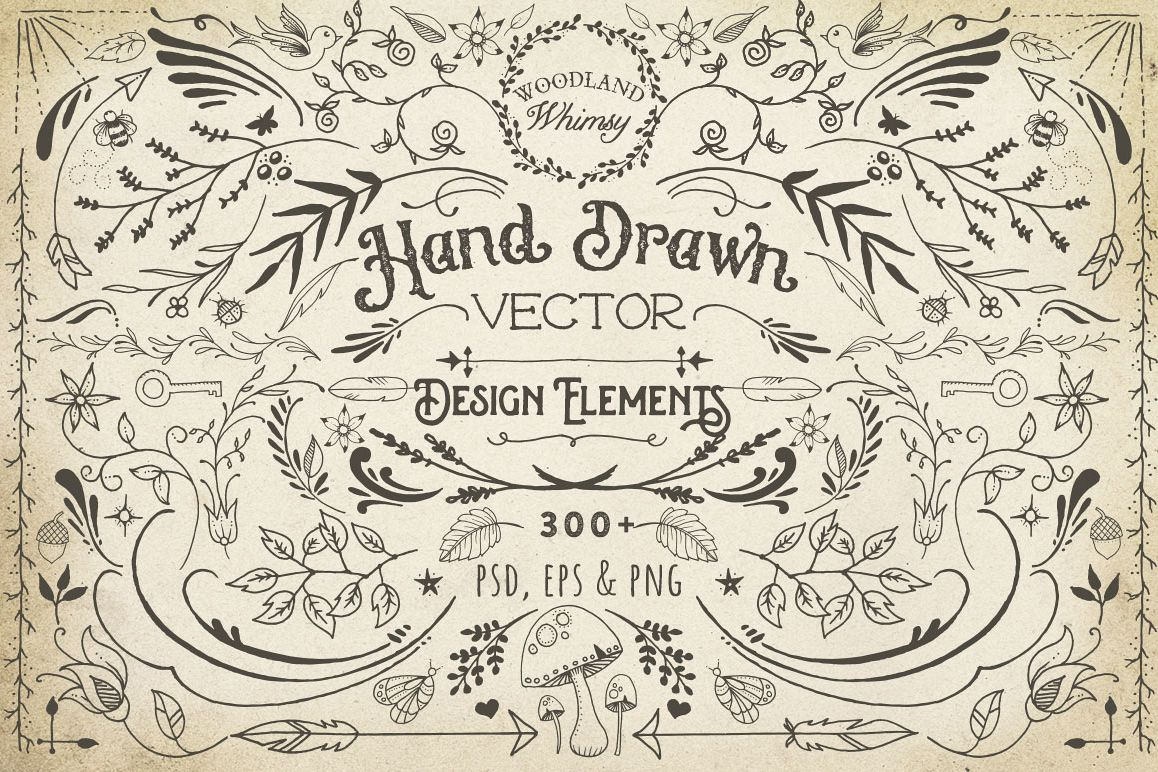 Hand Drawn Vector Design Elements example image 1