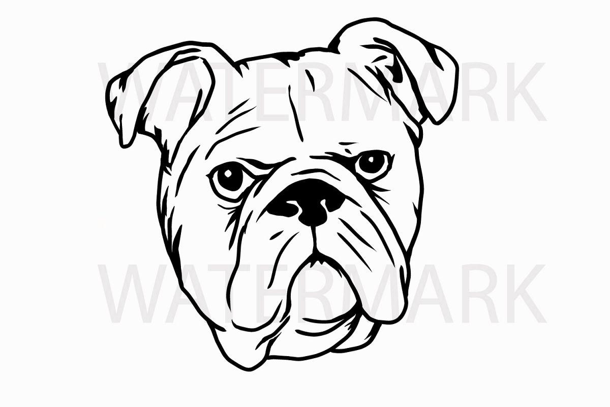 Bulldog Head A - SVG/JPG/PNG Hand Drawing example image 1