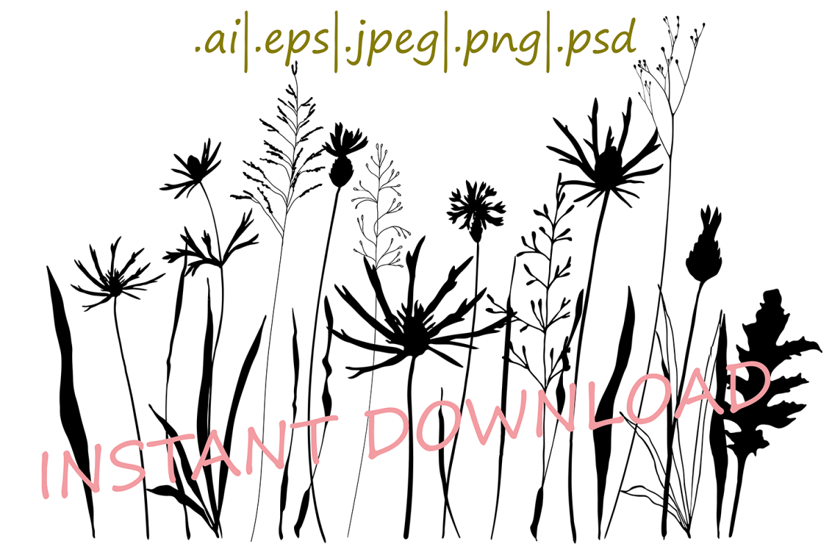 Meadow flowers , plants and grasses.  example image 1