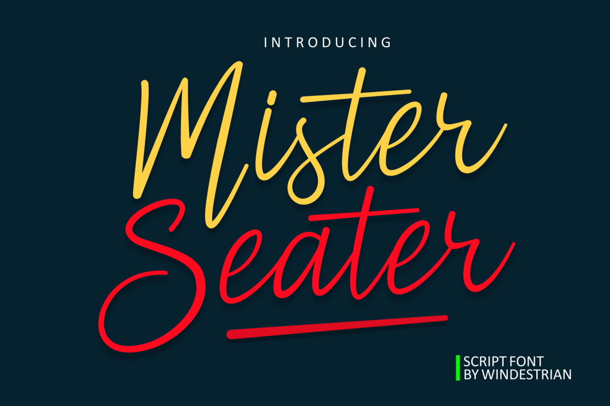 Mister Seater   Script Font example image 1