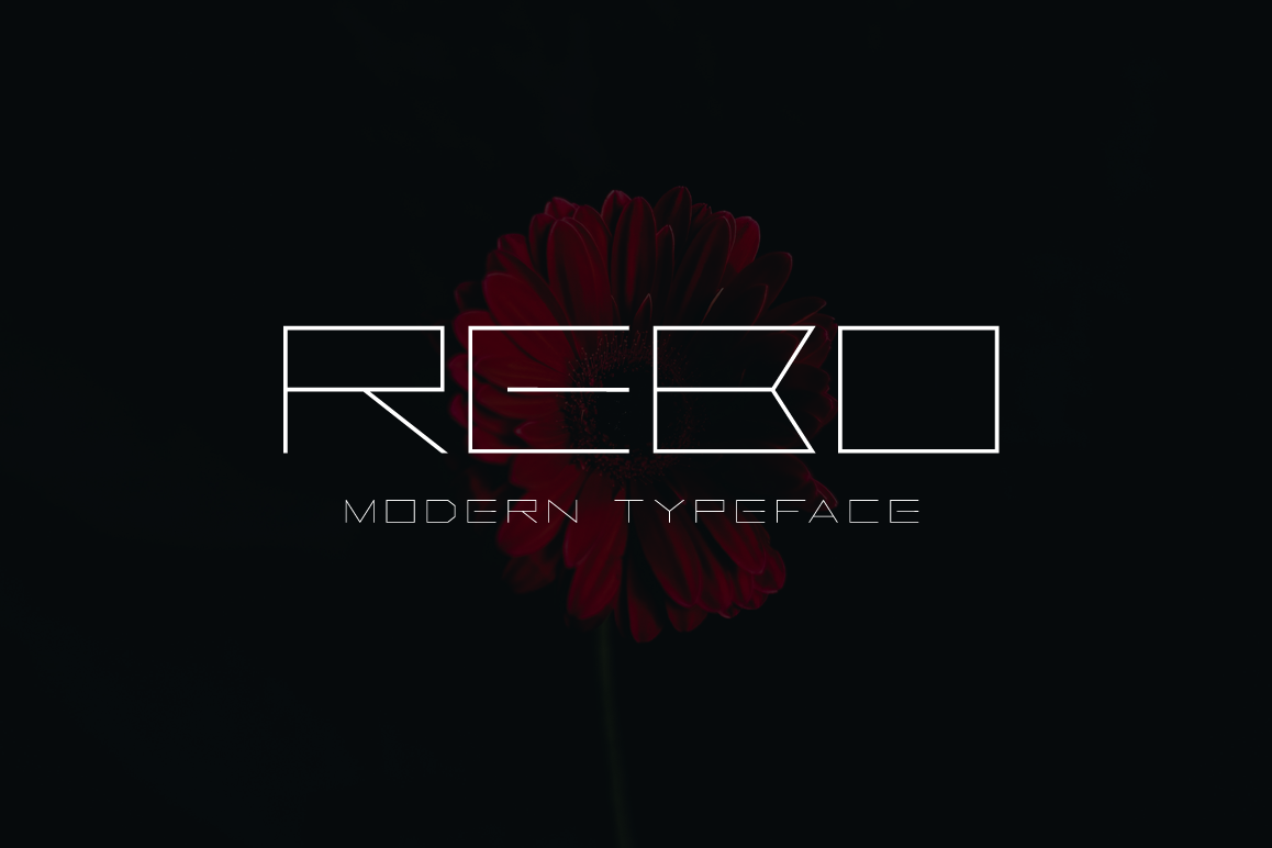Rebo example image 1
