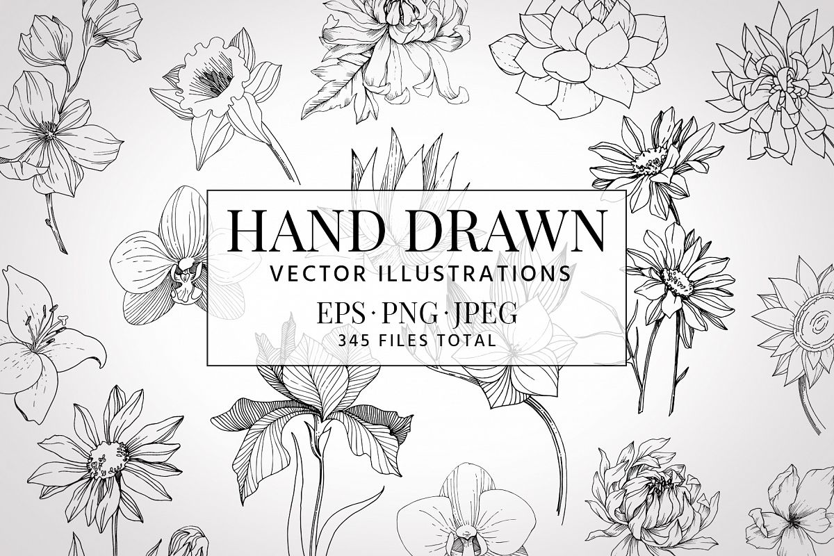 Vector illustration of Freesia flower watercolor png example image 1