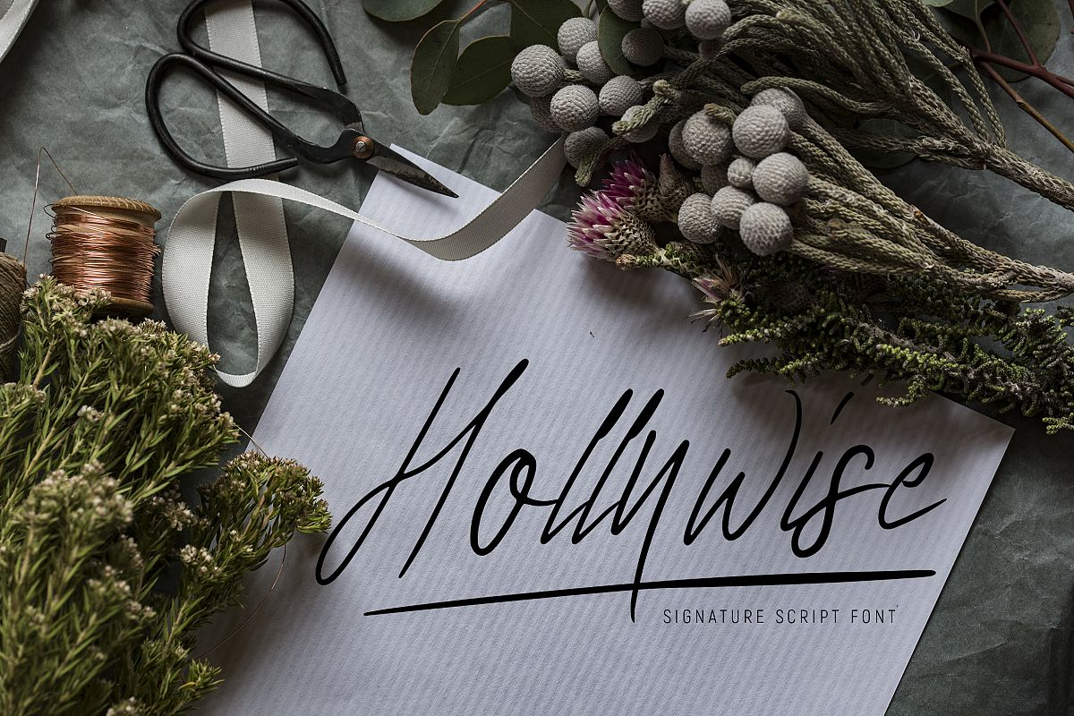 Hollywise - Signature Script Font example image 1