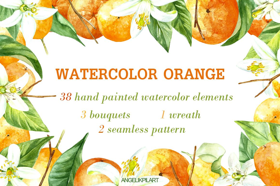 watercolor orange fruit illustration example image 1