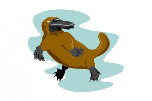 Platypus Front View example image 1