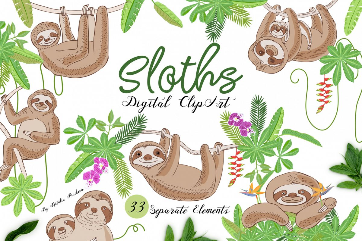 Sloths in Jungle Digital Clipart example image 1
