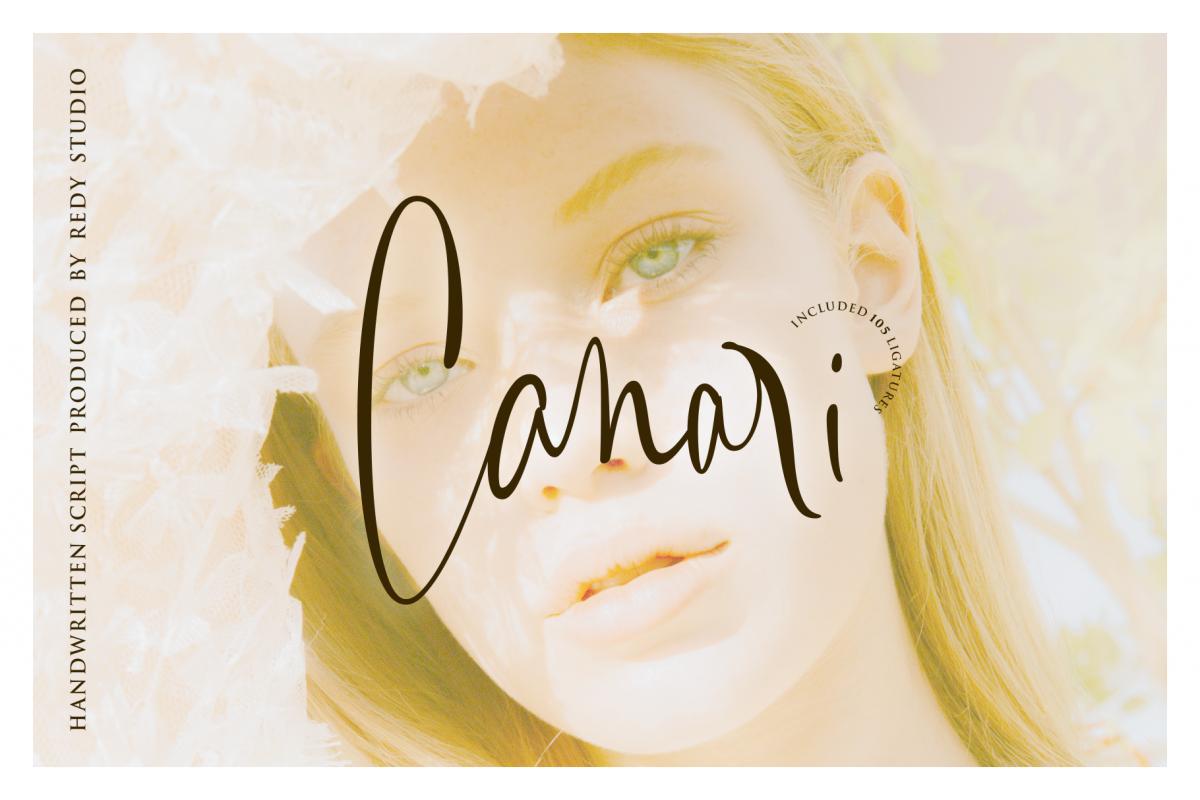 Canari   Signature Font example image 1