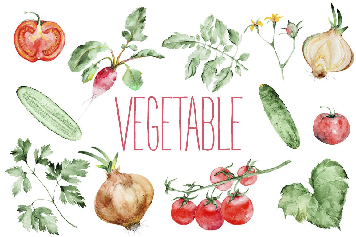Watercolor vegetables set example image 1