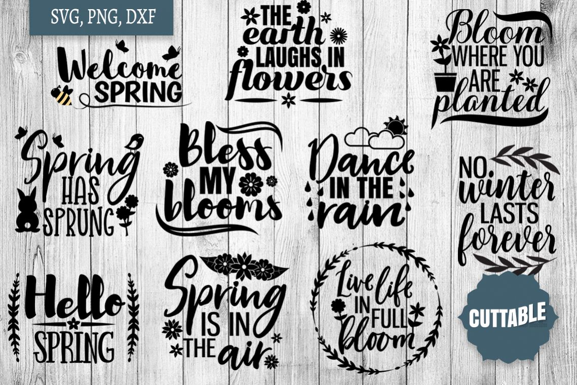 Spring SVG bundle, Spring quote cut file, welcome spring svg example image 1