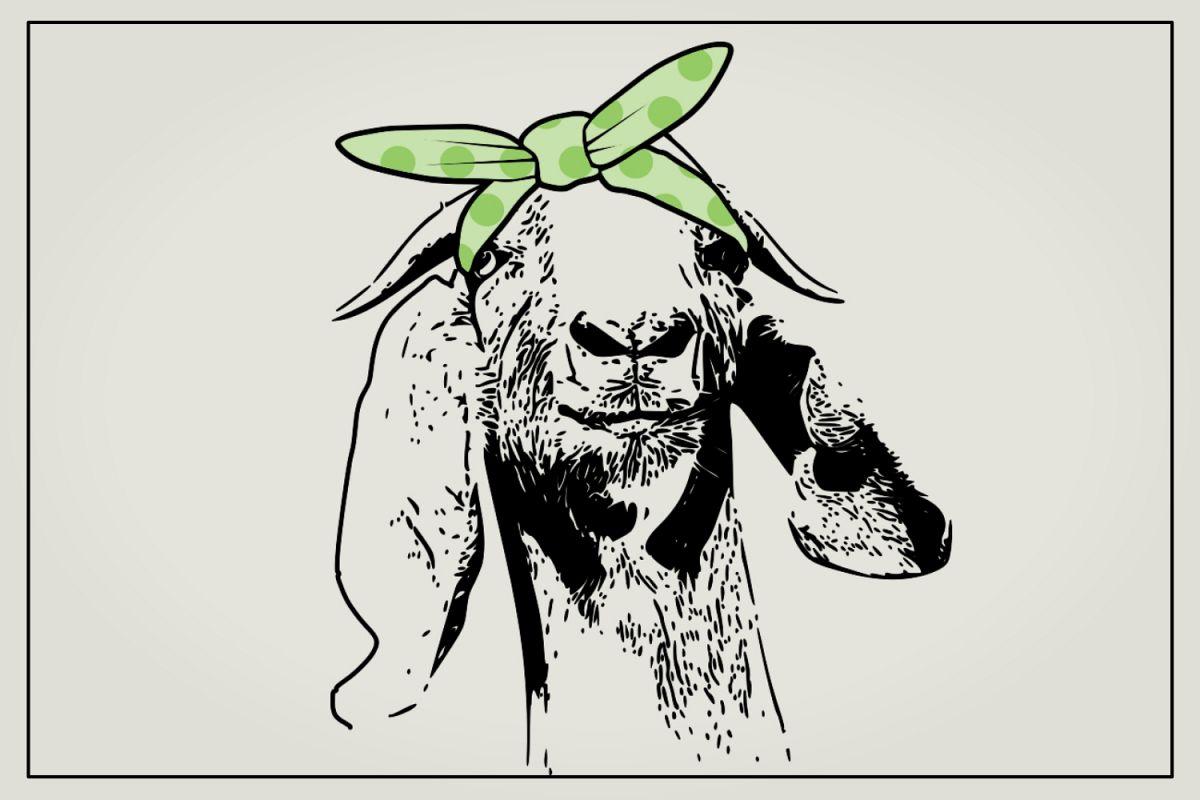 Goat with hair bandana example image 1