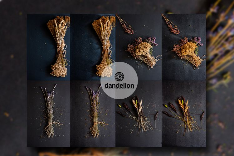 Dried flowers example image 1