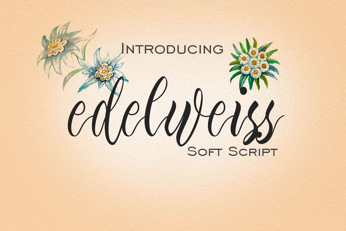 Edelweiss example image 1