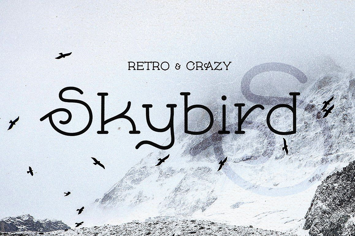 Skybird - Crazy, unique & retro example image 1