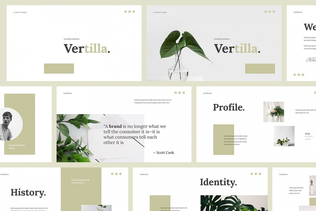 Vertilla-Brand Guideline Powerpoint example image 1