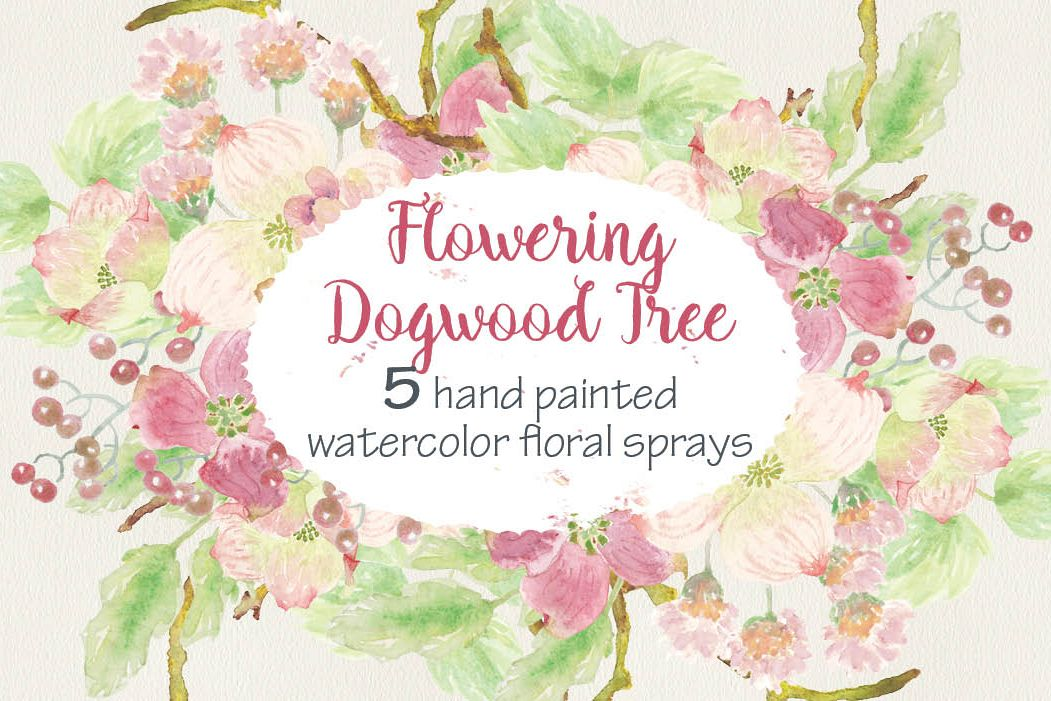 Watercolor sprays of flowering Dogwoods example image 1