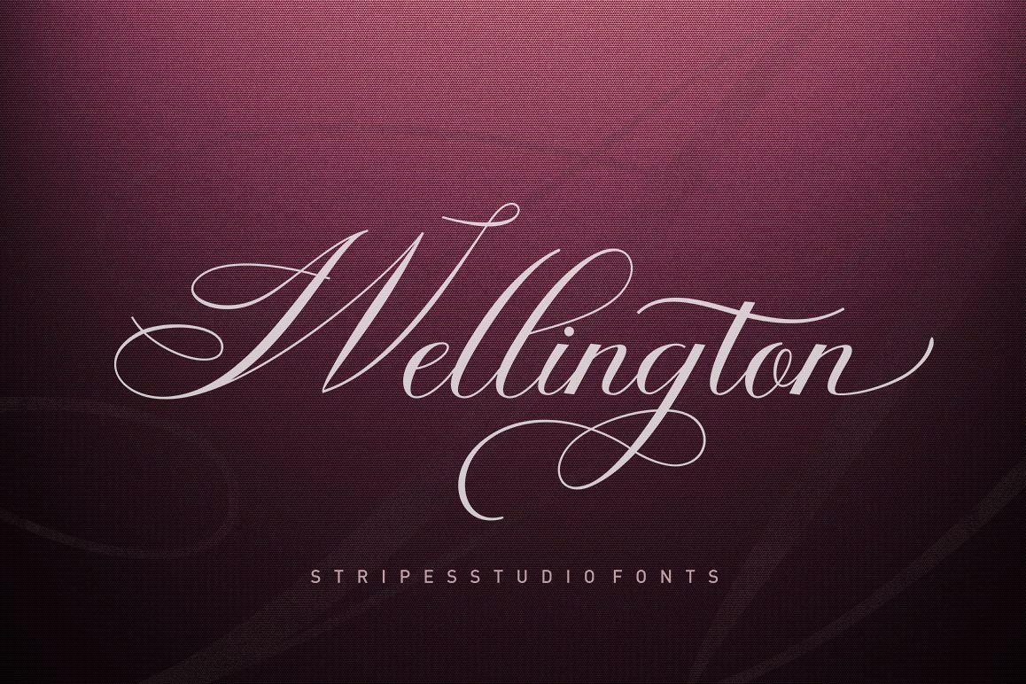 Wellington Script example image 1
