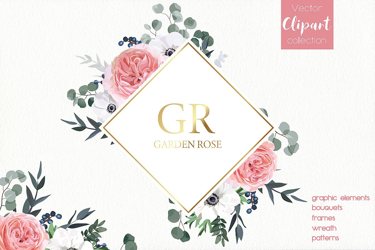 Garden Rose and Anemone - floral vector set example image 1