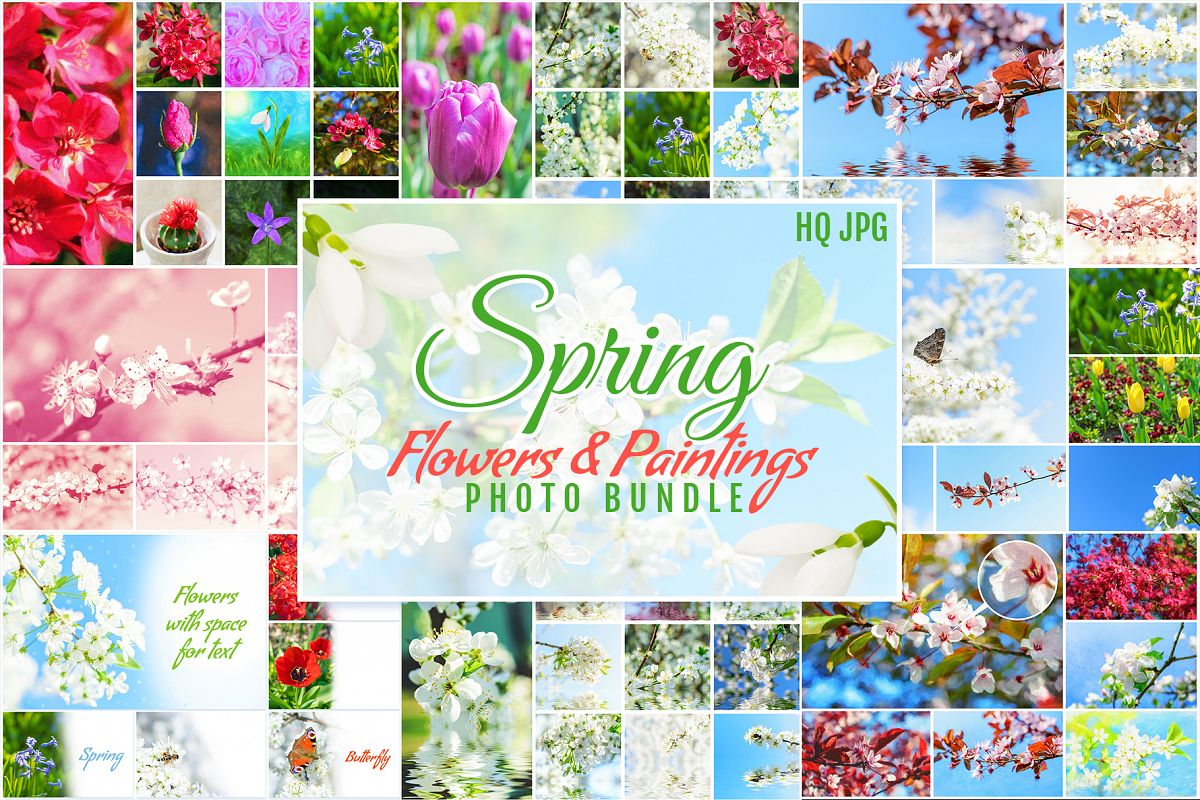 Spring Flowers and Paintings Bundle example image 1