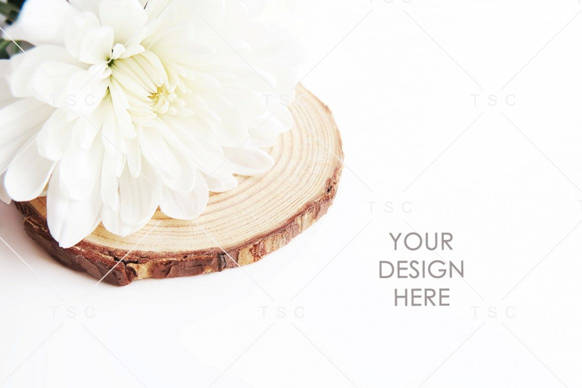 White Flower Stock Photo example image 1