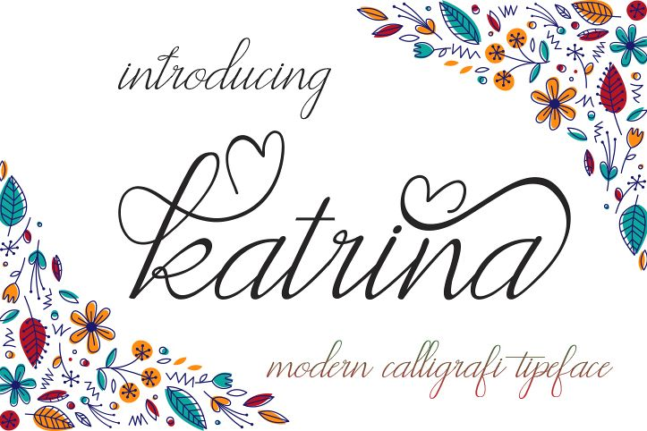 katrina example image 1