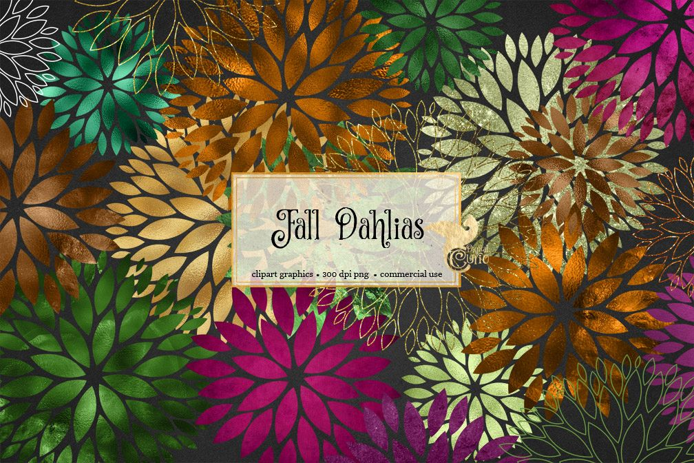 Fall Dahlia Clipart example image 1
