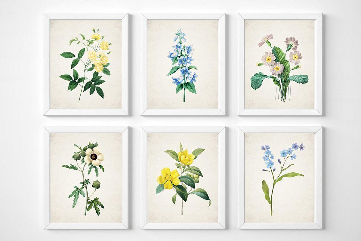 Botanical Print Set, Wildflower Wall Art, Set of 6 Prints example image 1