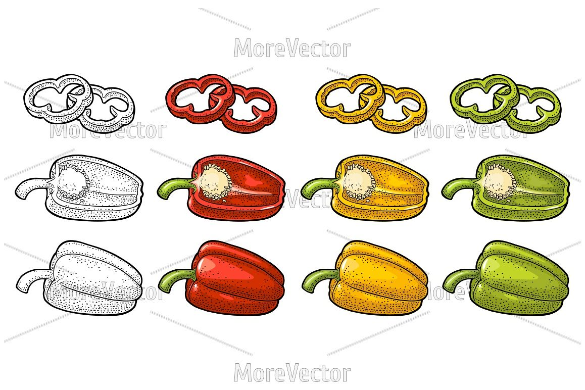 Sweet bell red, green, yellow pepper. Vector vintage color and black engraving example image 1