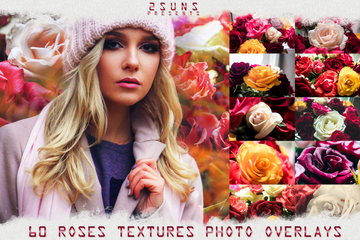 photograph relating to Printable Textures named Down load picture overlays pink rose petals printable textures