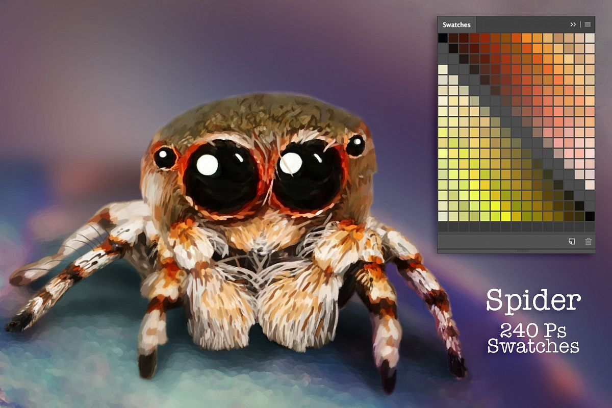 Spider Swatches example image 1